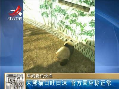 [视频]兰州动物园大熊猫口吐白沫 官方回应称正常