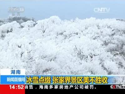[视频]冰雪点缀 张家界景区美不胜收