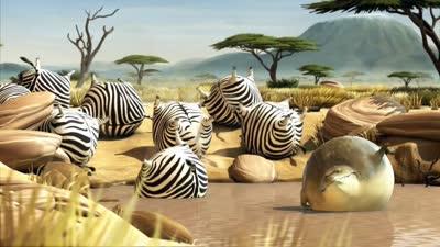 肥版国家地理 斑马