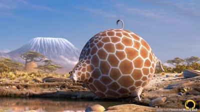肥版国家地理 长颈鹿