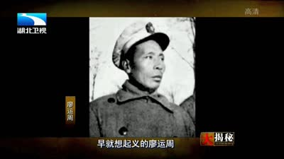 解放战争 淮海战役(下集)
