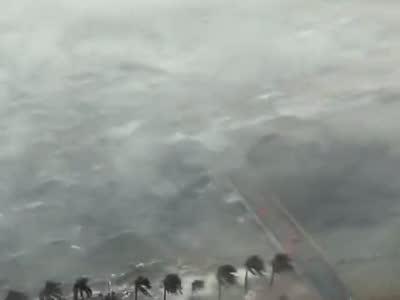 """[视频]视频实拍台风""""天鸽""""珠海登陆 风急浪大"""