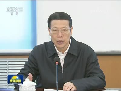 [视频]张高丽在黑龙江调研