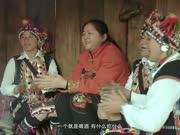 普洱茶的故乡—云南勐海,千年沃土,百年普洱!