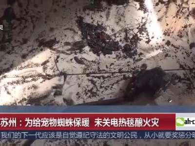[视频]江苏苏州:为给宠物蜘蛛保暖 未关电热毯酿火灾