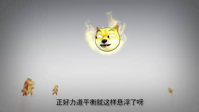 前方高能之神烦狗14