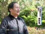 《广西故事》第49集:楹联传家大芦村