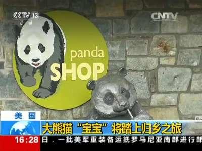 """[视频]美国:大熊猫""""宝宝""""将踏上归乡之旅"""