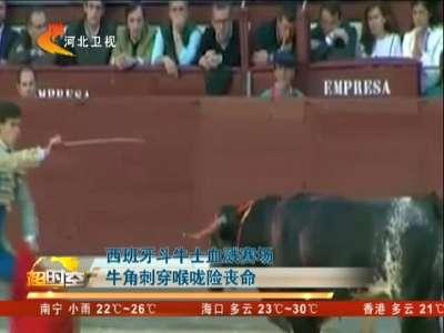 [视频]西班牙斗牛士血溅赛场 牛角刺穿喉咙险丧命