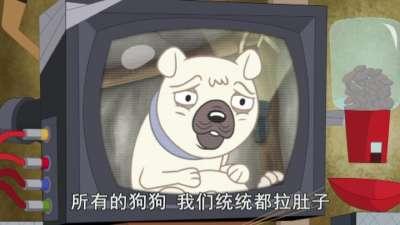 小狗邦德39