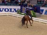 国际马联世界杯盛装舞步哥德堡站 全场录播