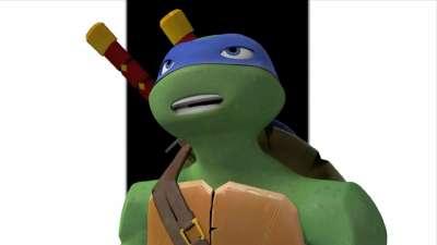忍者龟 19
