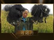 第五届最美义工榜样:刘懿丹