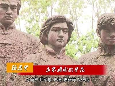 2017年04月04日湖南新闻联播