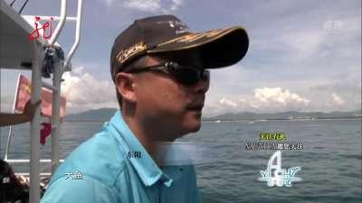 再探蜈支洲海钓之旅 海上争锋环球帆船赛