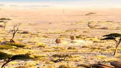 肥版国家地理 猎豹
