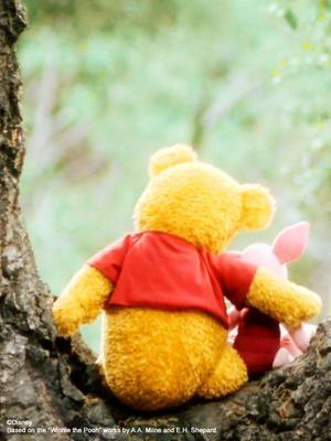 """小熊维尼""""小小的幸福""""系列短片"""