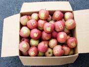 """我们过着""""5袋苹果""""的土豪生活-幸福压力锅20140212预告"""