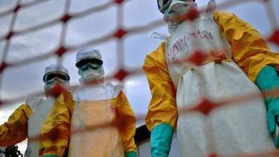 蚊子飞沫无法传播埃博拉 解密埃博拉病毒