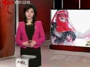 《真情人生》20120213:美女与蛇