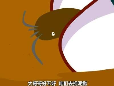 兔小贝儿歌-捉泥鳅(新)图片