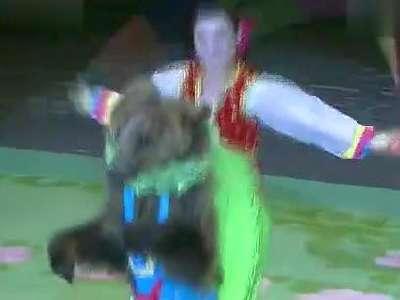 朝鲜的动物杂技表演- 在线观看