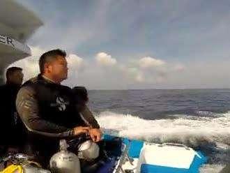 我爱这蓝色的海洋 4