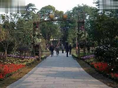 沙市中山公园2- 在线观看