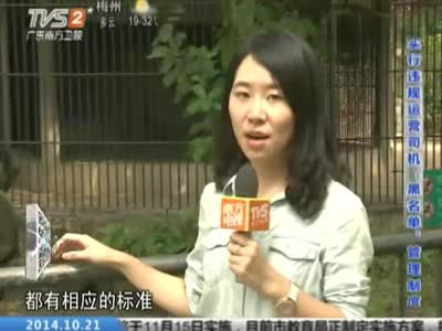 动物园安全:广州动物园 安全保障措施到位吗?_百度影视