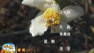 走进建德市大同镇上马村[浙江新闻联播]