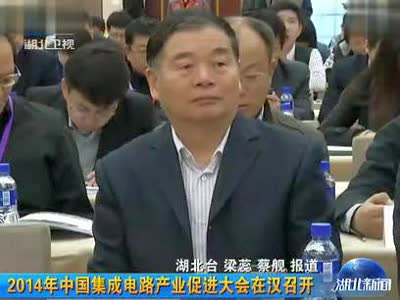 2014年中国集成电路产业促进大会在武汉召开